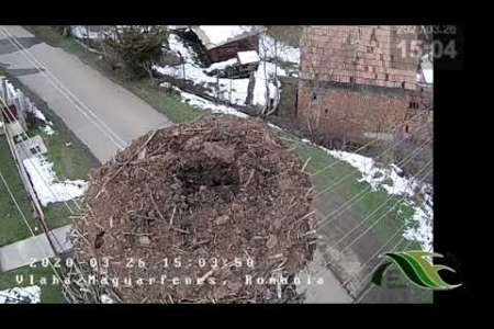 Embedded thumbnail for 26.03.2020 time-lapse